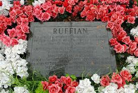 Ruffian Injury